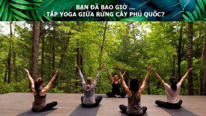 Xu hướng Wellness Second Home Nam Phú Quốc